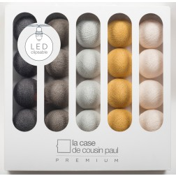 Lichterkette Premium Thelonious mit 20 LEDs 1,80m