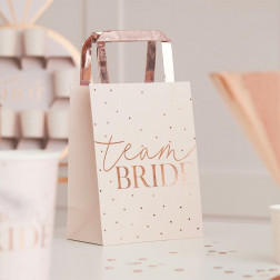 Pink Team Bride Rose Gold Hen Party Bags 5 Stück