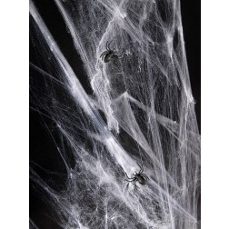 Spinnennetz 60g