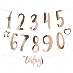 Create Your Own Birthday Bunting Roségold